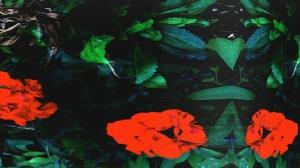 "Zanski Gets In The Zone On Wavy New Single ""So Ill"""